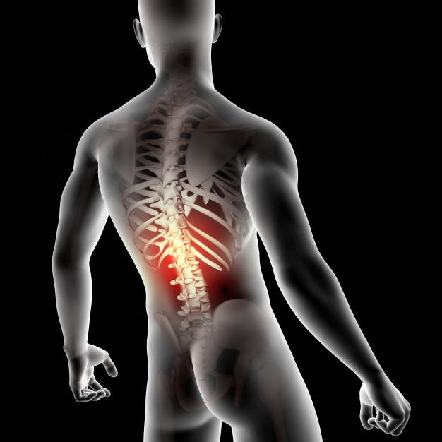 Kiropraktisk-klinik-Gunvor-Jørnsgård-Haderslev-nederst-ryg
