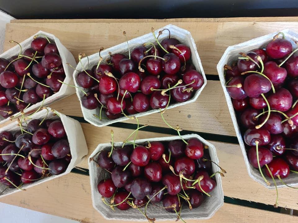 lottesgaardbutik.com-kirsebær