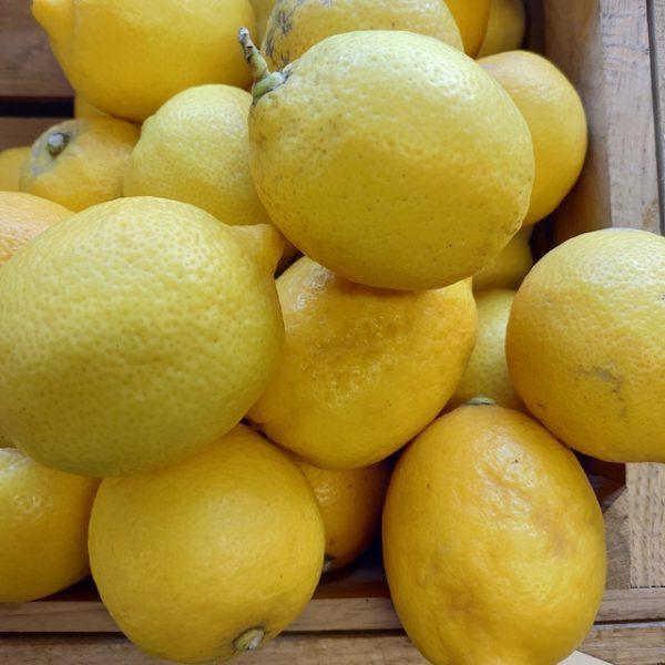 Økologiske citroner