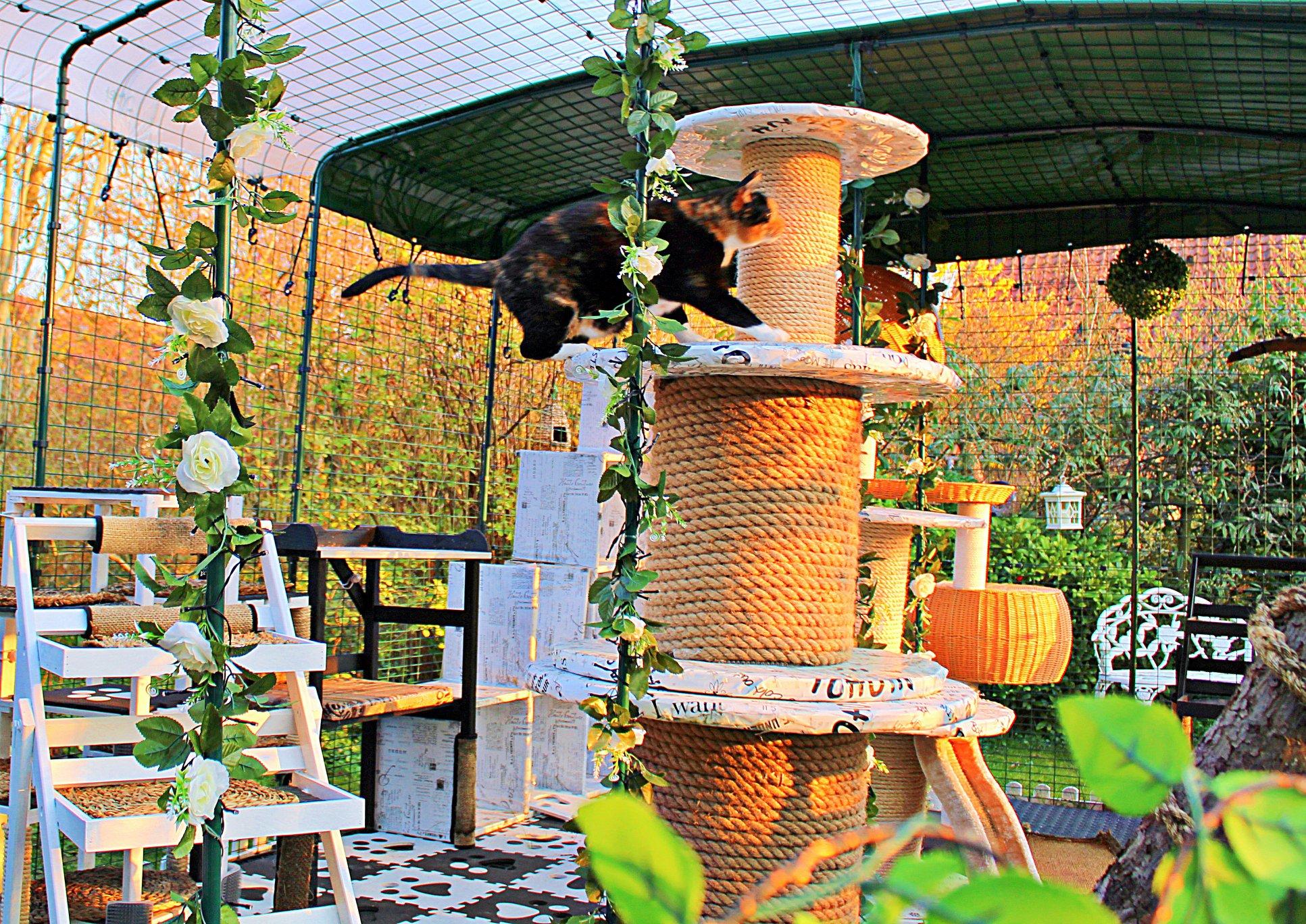 Bella hygger på sisal tårn i solen