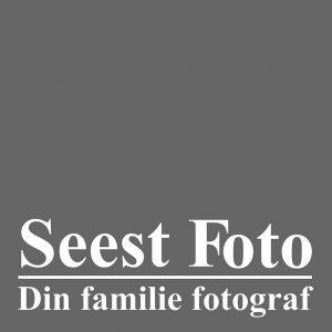 Seest foto kolding logo