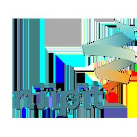 Niipit logo