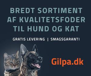 Gilpa.dk
