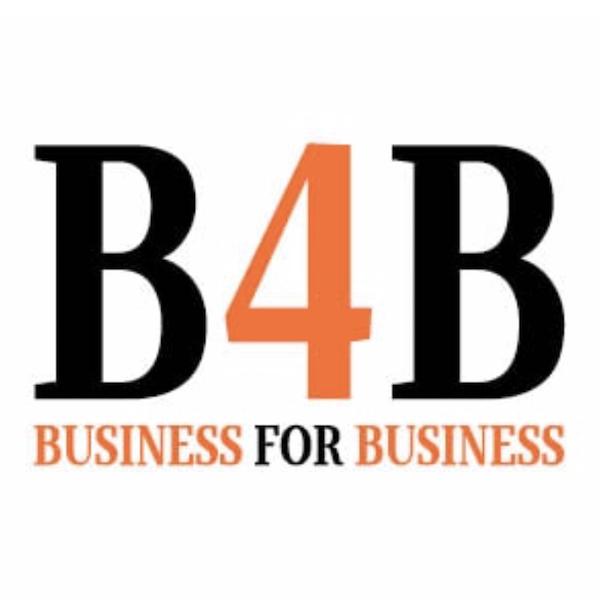 B4B Alt til og fra virksomheder hos Niipit